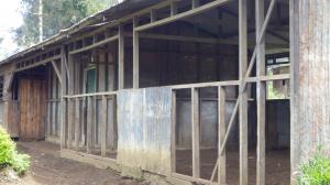 Neglected school maintenance