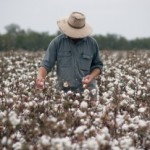 Few takers in new trial sectors for Australia's Seasonal Worker Program