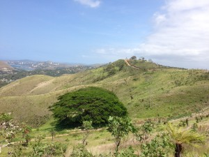 Bushwalk in Port Moresby Hills (1)