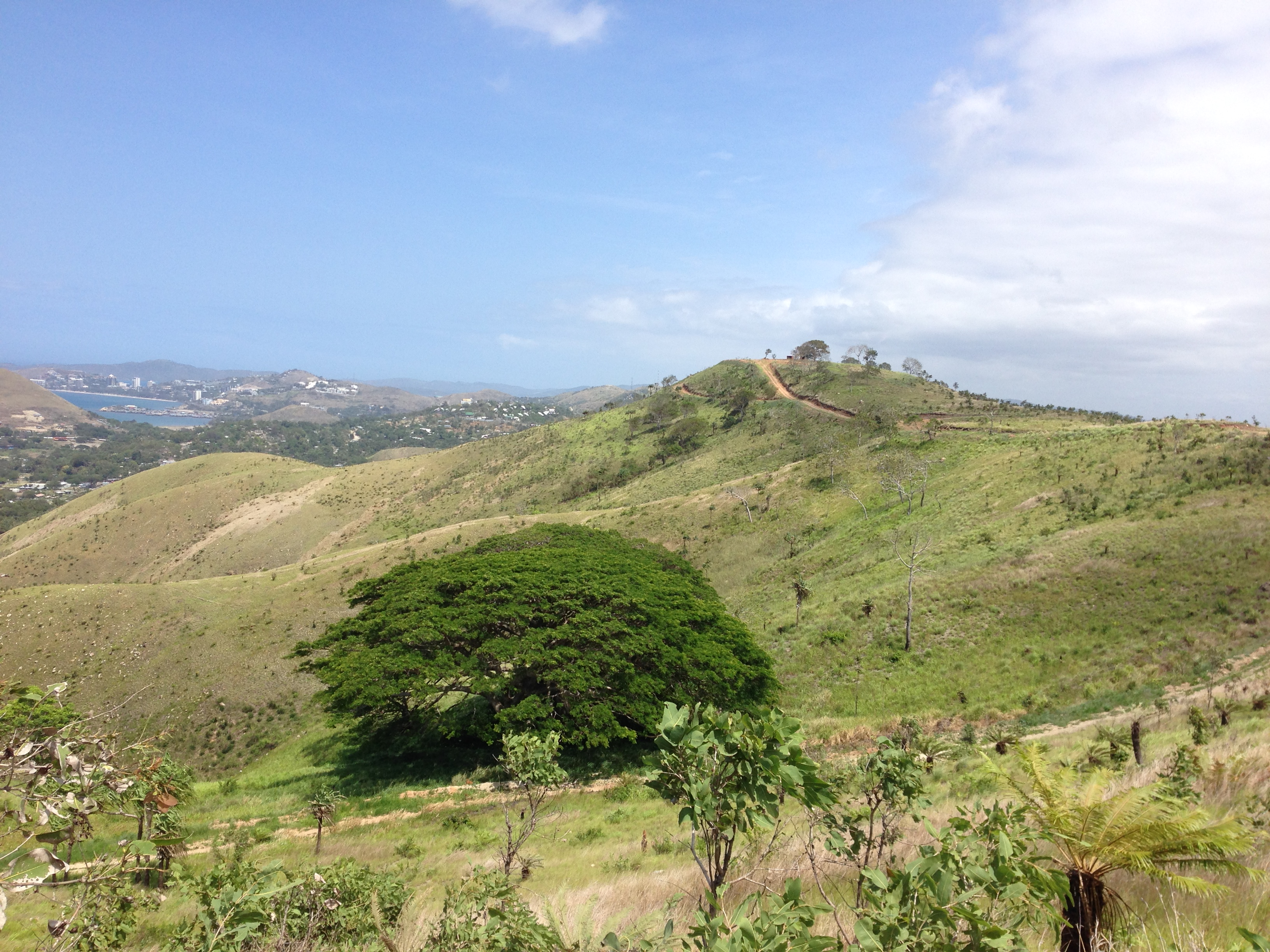 Settling as an expat in Port Moresby – a personal account