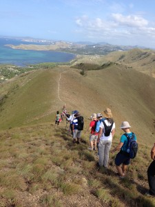 Bushwalk in Port Moresby Hills (2)