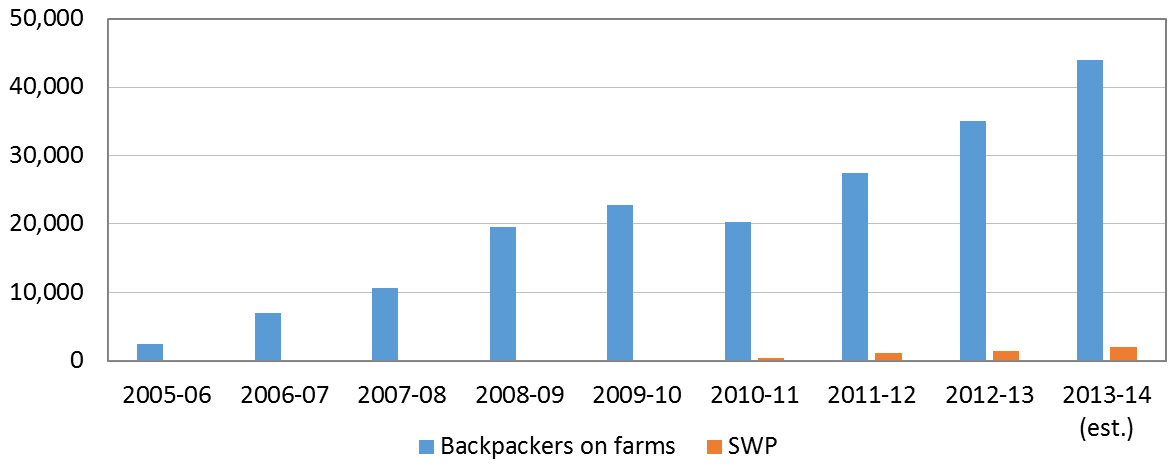 Pacific seasonal workers can't compete with backpackers