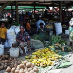 A tough nut to crack: legislating for Papua New Guinea's informal economy