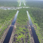 The Indonesia-Australia Forest Carbon Partnership: a murder mystery