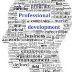 Professional development?