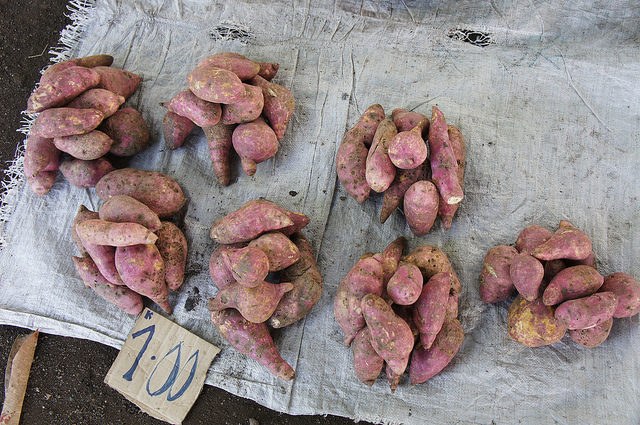 Sweet potatoes for sale, Intoap market, Markham Valley, PNG in 2010 (image: Flickr/Biodiversity International/P Mathur)