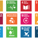 Can the SDGs be achieved by 2030?