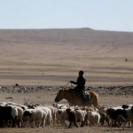 Resources to cash: a cautionary tale from Mongolia