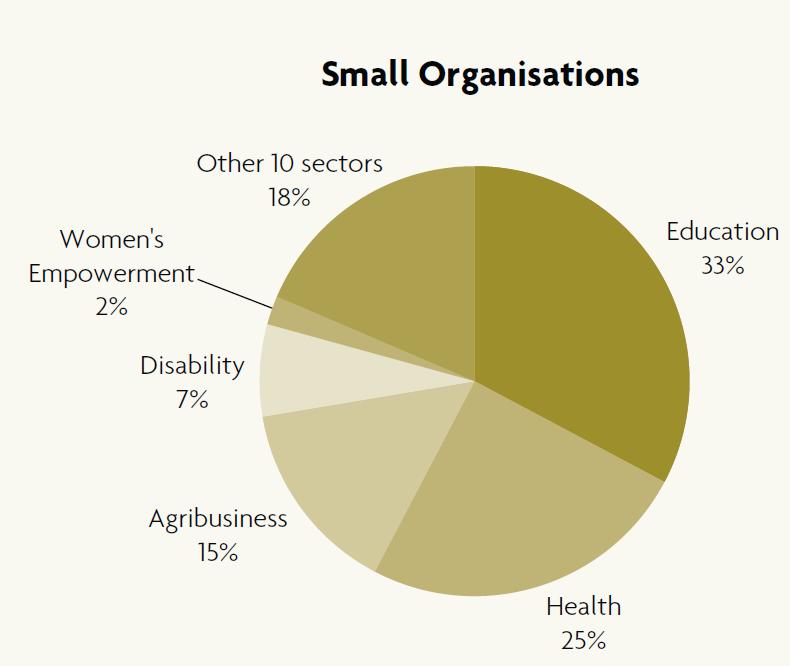 ACFID Small Organisations