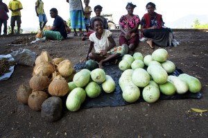 Women selling coconut and bottle gourd in a local market in Intoap situated in Markham valley in the Highland Highway between Lae and Goroka in Papua New Guinea. Photo: P. Mathur / Bioversity International