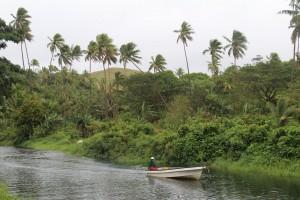 Naviavia villager navigates river through swampland area of Kiribati-purchased land (Ellsmoor/Rosen)
