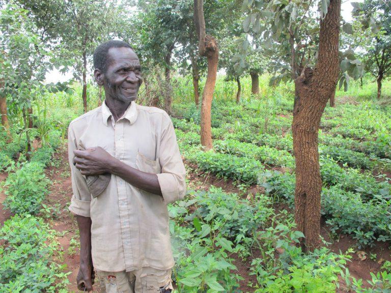 FMNR in East Africa (image: World Vision Australia)