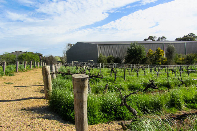 Barossa Valley winery pathway (Flickr/Jocelyn Kinghorn CC BY NC 2.0)