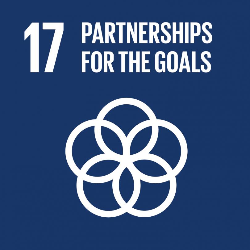 Goal 17 logo