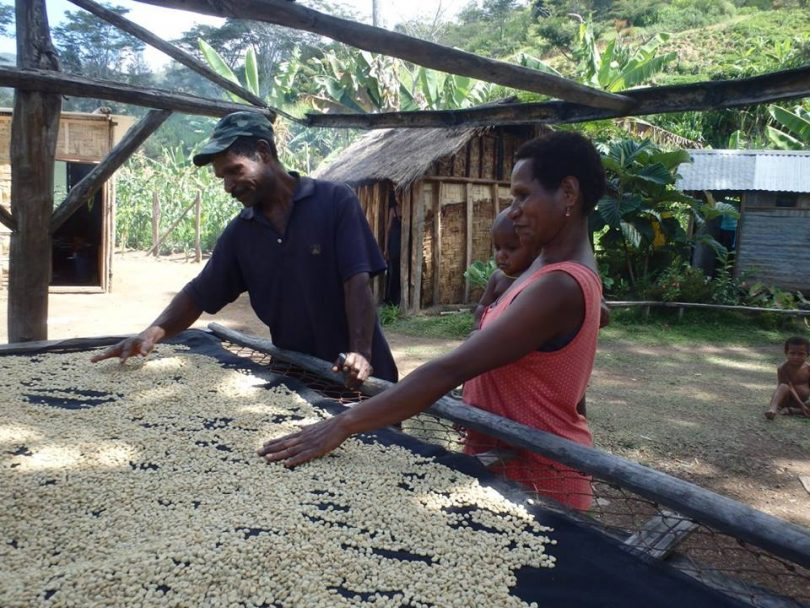 Beans drying, Eastern Highlands (image: Village Coffee)