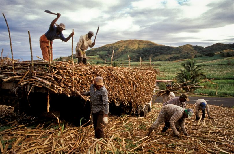 Field workers, Fiji (Asian Development Bank/Flickr CC BY-NC-ND 2.0)