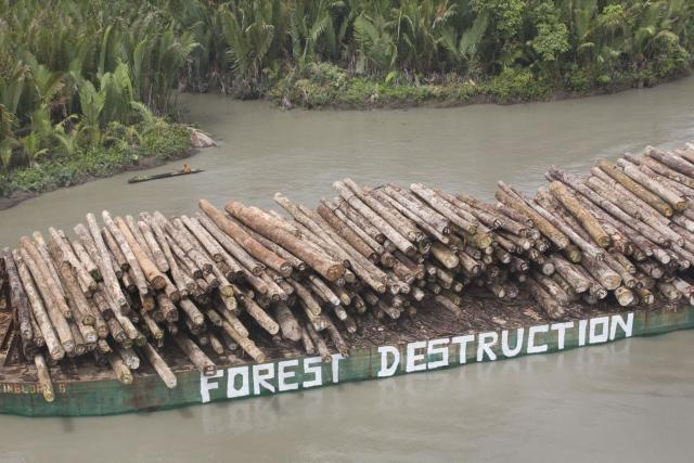 Trees felled by Rimbunan Hijau waiting to be loaded onto a ship (Esperanza A Greenpeace/Flickr/CC BY-NC-ND 2.0)
