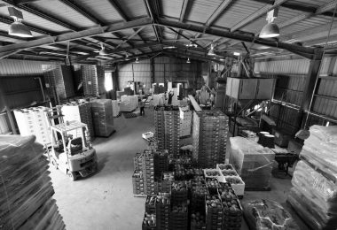 A packing shed in Mareeba, Queensland (Matthew Kenwrick/Flickr/CC BY-NC-ND 2.0)