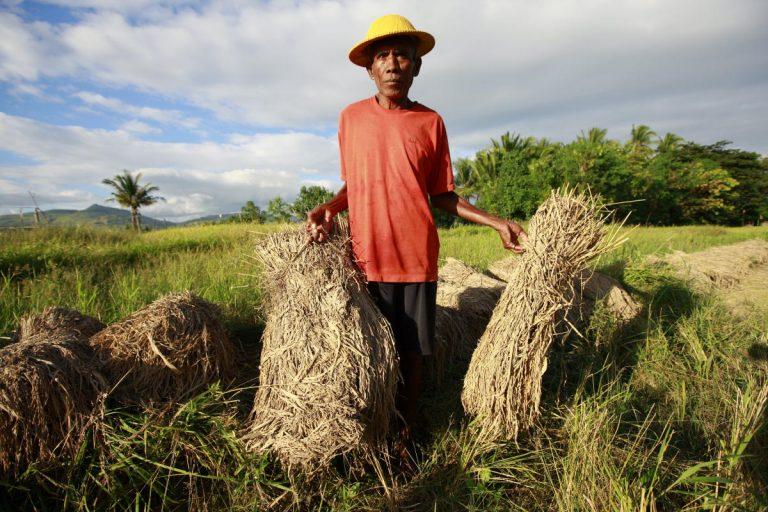 A farmer in Timor-Leste (UN/Flickr/CC BY-NC-ND 2.0)