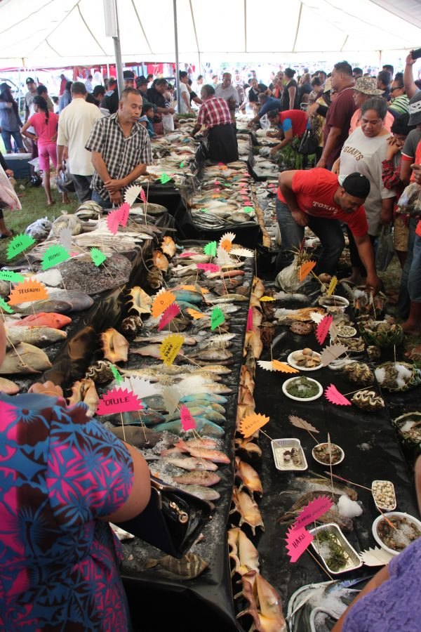 Royal Agriculture & Fisheries Show, Tonga (Credit: Denis Tolkach)