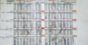 One of the NHIS tally sheets for PNG health centres to use (Photo credit: Manual Hetzel)