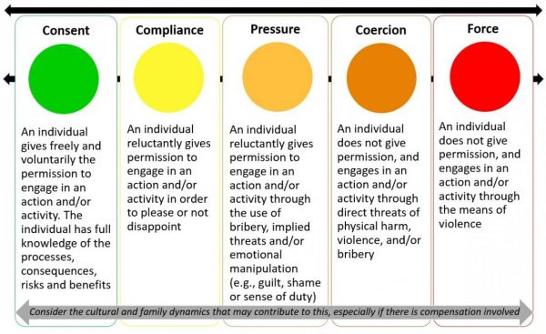 Figure 1: The Consent Continuum (Image supplied by RDI Network 2020.)