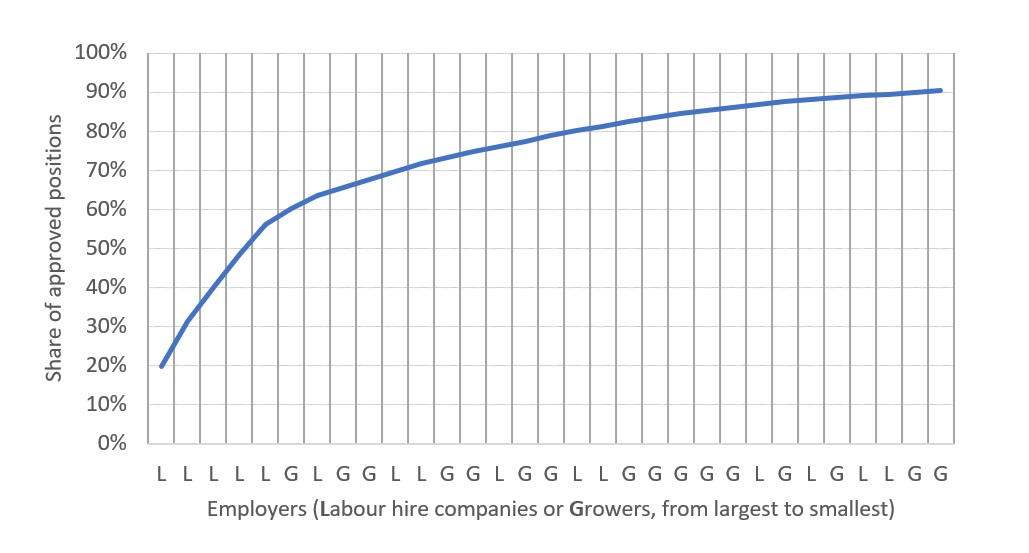 Figure 2: Concentration of approved SWP positions by employer