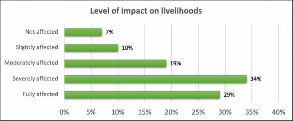 Level of impact on livelihoods (Source: Rapid assessments in 14,000 households in World Vision programs in Asia)