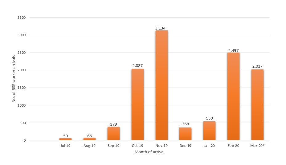 Figure 1 RSE worker arrivals July 2019 to March 2020