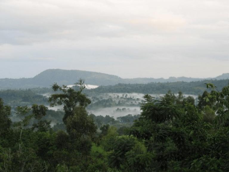Cloud forests on the road to Yoka, Decha Woreda, Kafa Zone, southwest Ethiopia