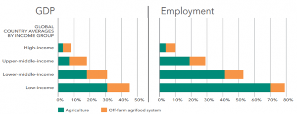 Figure 1: As economies grow, agri-food job creation shifts beyond the farm, while on-farm jobs become fewer and better