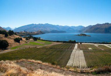 Pacific seasonal workers to New Zealand: slow progress