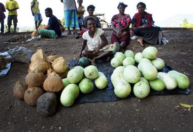 Photograph of a young women sitting cross-legged on dirt selling coconuts and bottle gourds which are spread on black plastic in front of her.